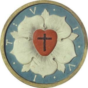 Róża Lutra